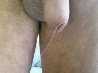 I get off looking a pics of my cock and others dripping with precum. Hope you enjoy this too.