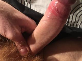 Do you like my red hairy cock? ;)