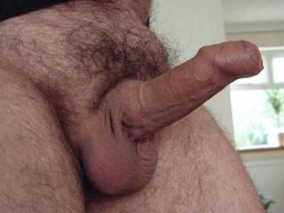 My uncut cock fully erect and raring to go. Let me know what you think, or what you'd like to do with it!