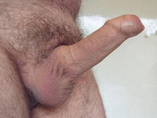 My uncut cock. Yes - the foreskin covers the end when erect - but it does slide back too! Let me know what you think, or what you'd like to do with it!